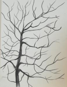 1 - Charcoal Drawing iin Sketchbook