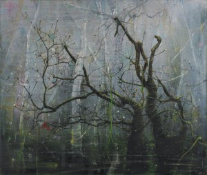 Ssighting Elizabeth Magill